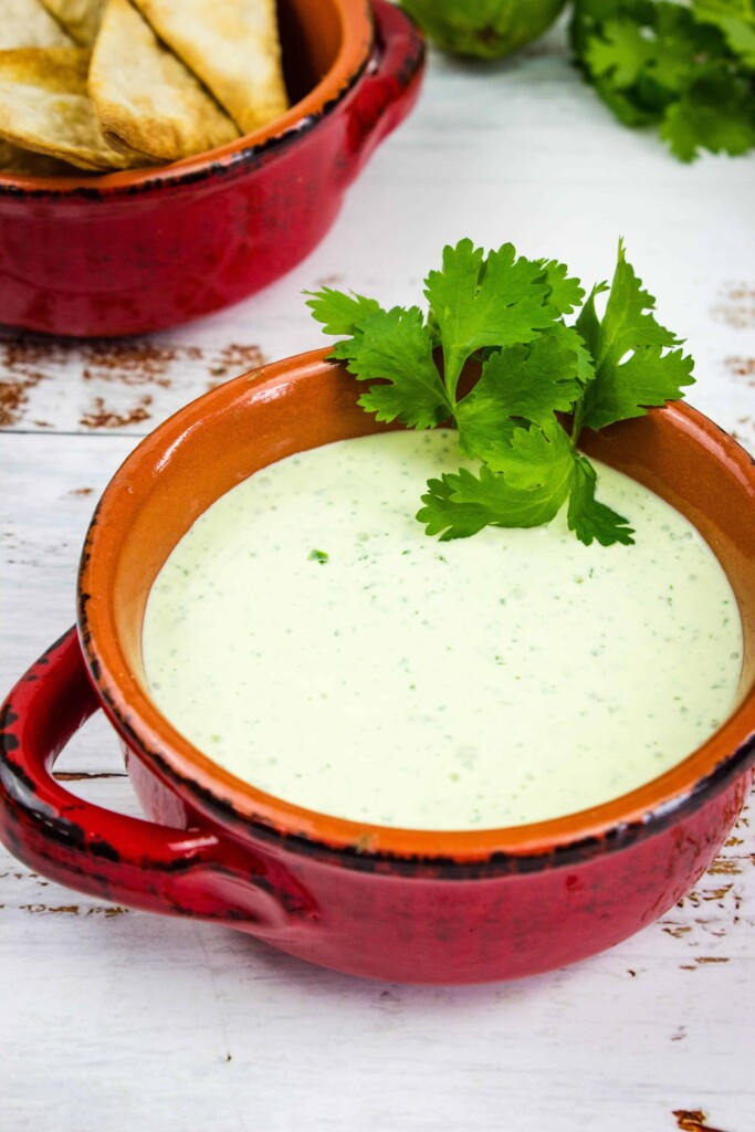 a closeup shot of creamy jalapeno dip in a rustic bowl with tortilla chips in the background