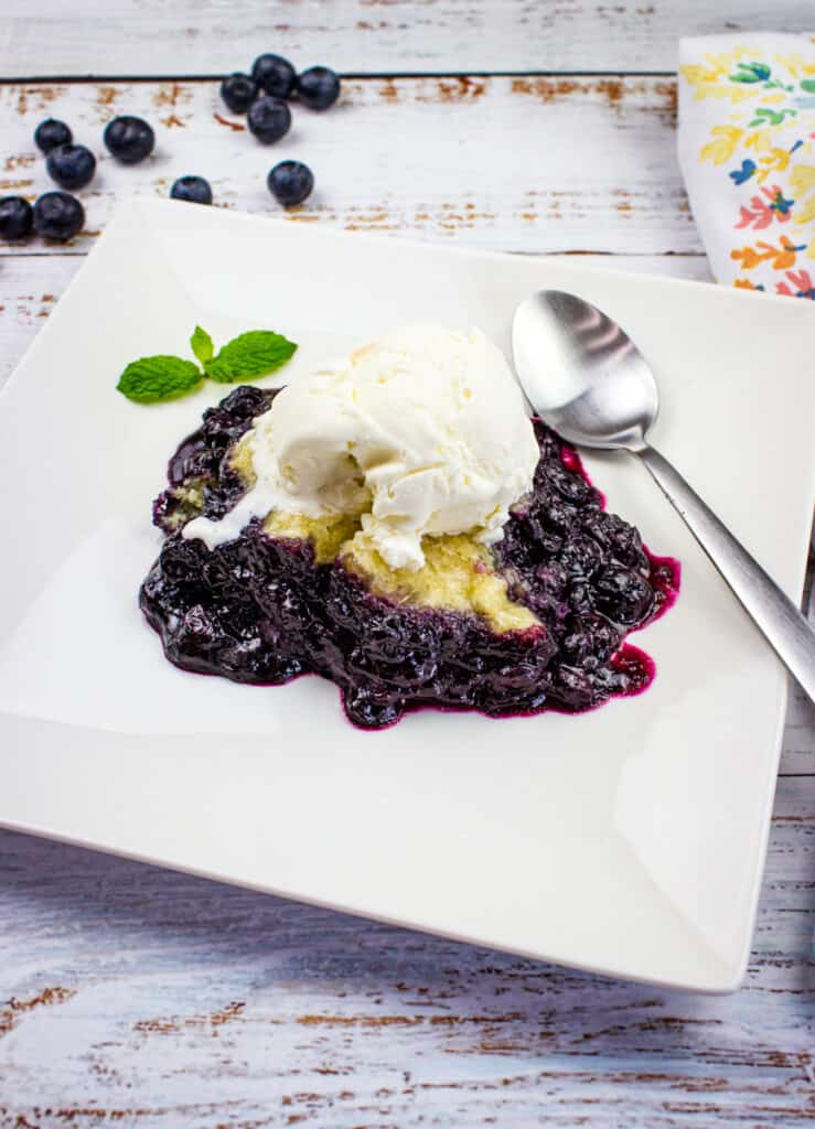 blueberry grunt on a plate